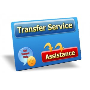 E-Commerce Site Transfer Service
